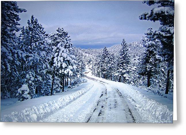 Julie Magers Soulen Greeting Cards - Winter Woodland Photo -Country Roads Take Me Home -Mountain Landscape -Nature Greeting Card by Julie Magers Soulen