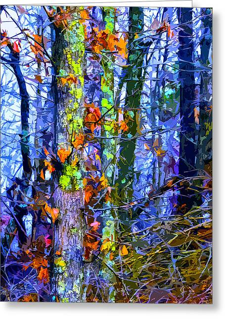 Park Scene Mixed Media Greeting Cards - Winter Woods Greeting Card by Brian Stevens