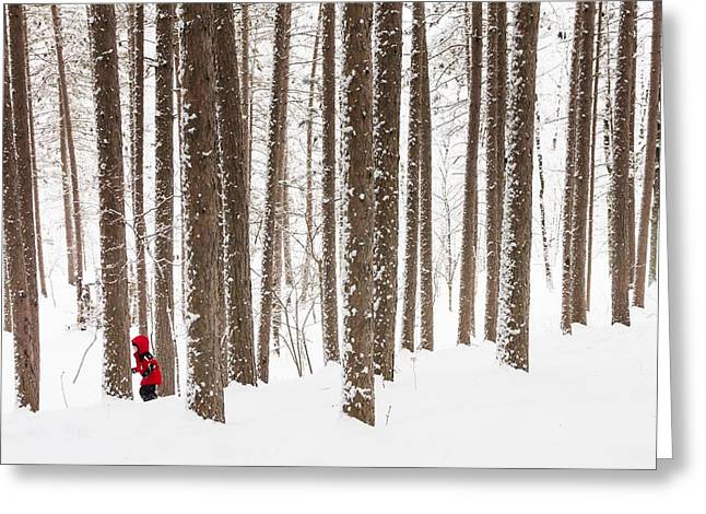 Fresh Snow Greeting Cards - Winter Frolic Greeting Card by Mary Amerman
