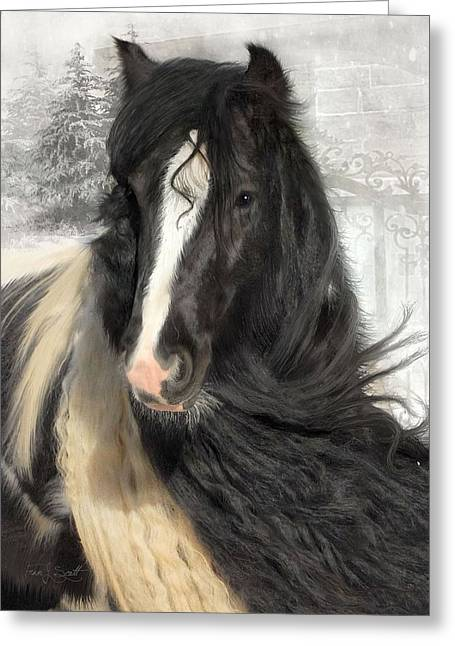 Gypsy Vanner Horse Greeting Cards - Winter Woolies Greeting Card by Fran J Scott