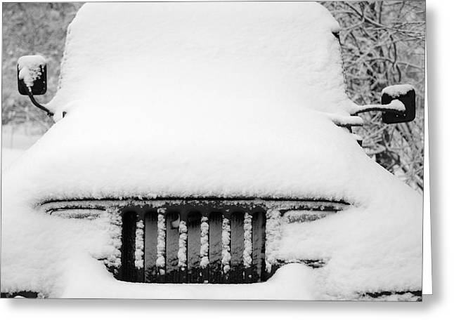 Black 7 White Greeting Cards - Winter Wrangler Greeting Card by Luke Moore
