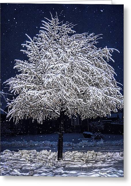 Snow-covered Landscape Digital Art Greeting Cards - Winter Wrapping Greeting Card by Jo-Anne Gazo-McKim
