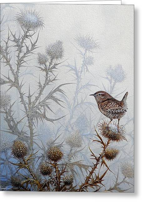 Blue Thistles Greeting Cards - Winter Wren Greeting Card by Mike Stinnett