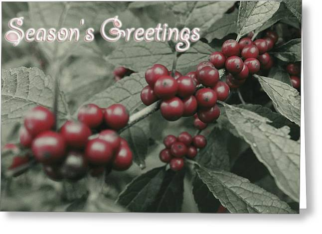 Winter Holiday Greeting Cards - Winterberry Greetings Greeting Card by Photographic Arts And Design Studio