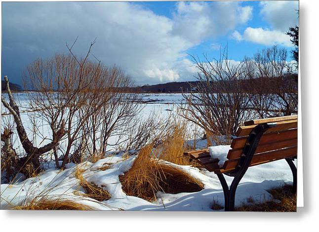 Salt Marsh. New England Greeting Cards - Winterlude Greeting Card by Dianne Cowen