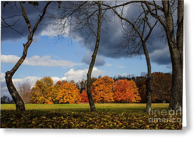 Ying Greeting Cards - Winters Approach Greeting Card by Tom Gari Gallery-Three-Photography