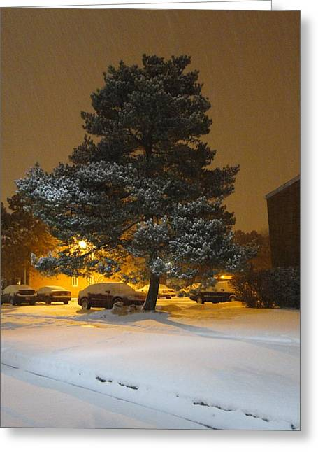 Guy Ricketts Photography Greeting Cards - Winters Blanket Greeting Card by Guy Ricketts