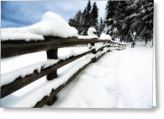 Drifting Snow Greeting Cards - Winters Blanket Greeting Card by Mountain Dreams
