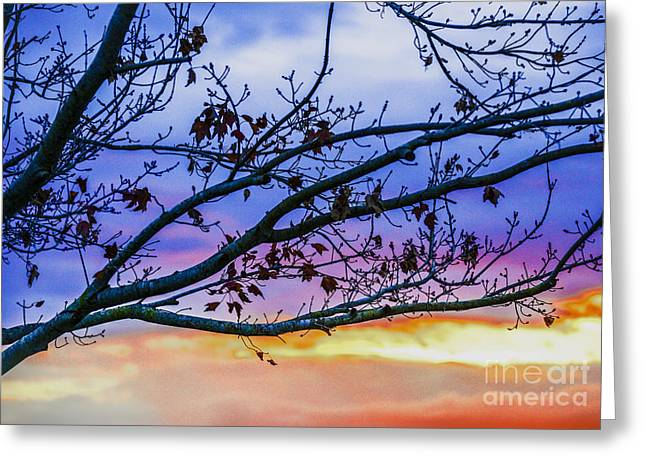 Bedroom Art Greeting Cards - Winters Dream Greeting Card by Amanda Sinco