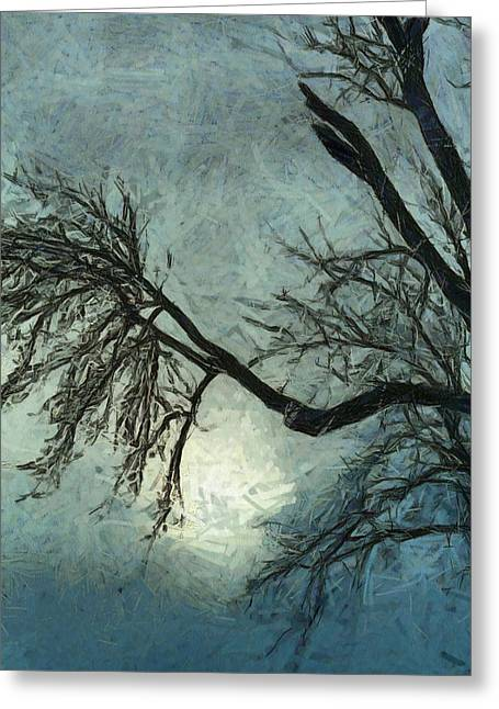Trees In Winter Greeting Cards - Winters Embrace Greeting Card by Dan Sproul