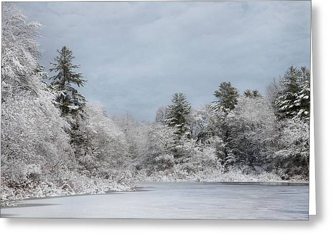 Frosting Greeting Cards - Winters Frosting Greeting Card by Robin-lee Vieira