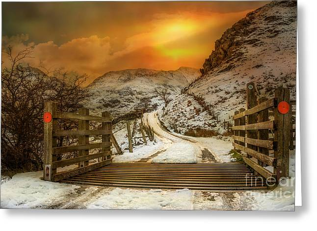 Cattle Photographs Greeting Cards - Winters Gate Greeting Card by Adrian Evans