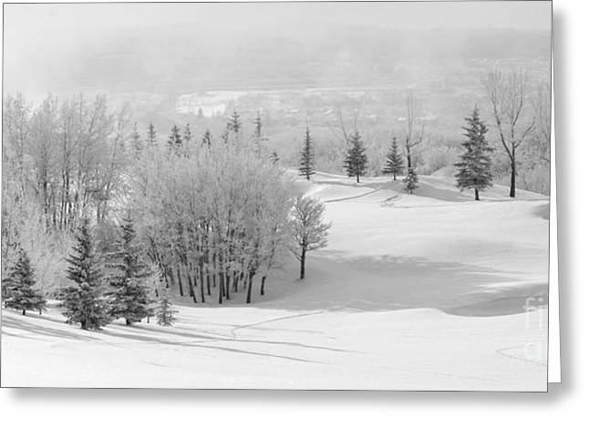 Snow-covered Landscape Greeting Cards - Winters Gentle Kiss Greeting Card by Dee Cresswell