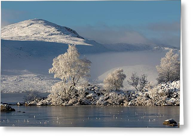 Rannoch Moor Greeting Cards - Winters Icy Grip Greeting Card by Pat Speirs