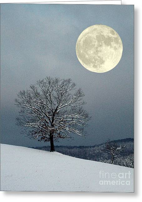 Winter's Moon Greeting Card by Laurinda Bowling