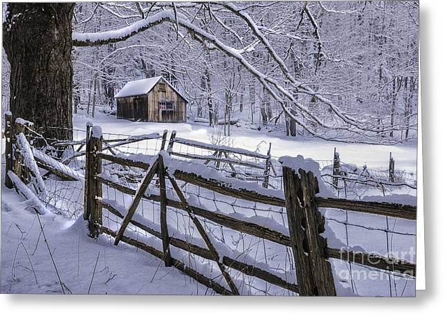 The Berkshires Greeting Cards - Winters Mystique   Greeting Card by Thomas Schoeller