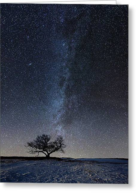 Andromeda Galaxy Greeting Cards - Winters Night Greeting Card by Aaron J Groen