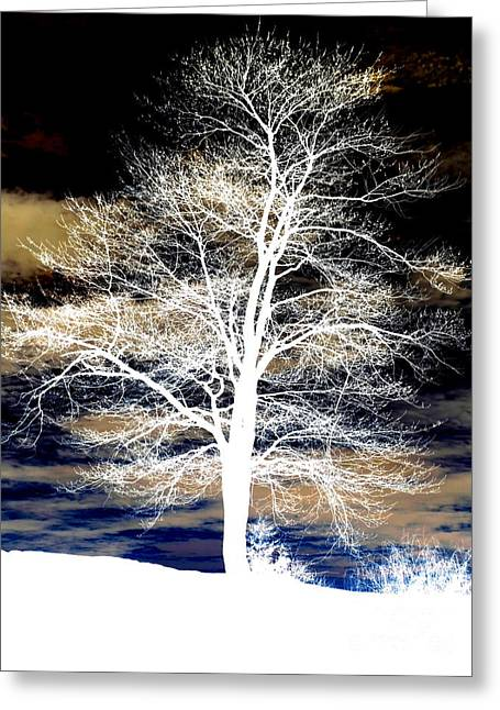 Surreal Landscape Mixed Media Greeting Cards - Winters Night Sky Greeting Card by Janine Riley