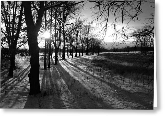 Patrick Greeting Cards - Winters Shadow Greeting Card by Patrick