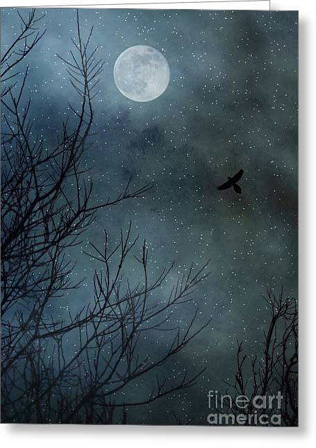 Night Hawk Greeting Cards - Winters Silence Greeting Card by Trish Mistric