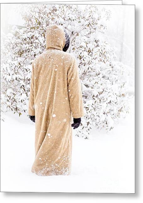 Snow-coated Greeting Cards - Winters Tale II Greeting Card by Edward Fielding
