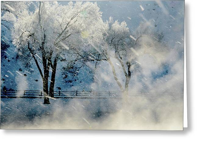 Dream Scape Greeting Cards - Winters Tapestry.. Greeting Card by Al  Swasey