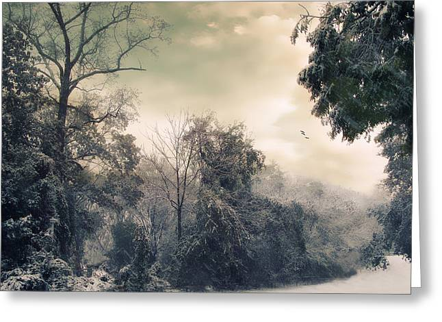 Frozen Digital Greeting Cards - Winters Tones Greeting Card by Jessica Jenney
