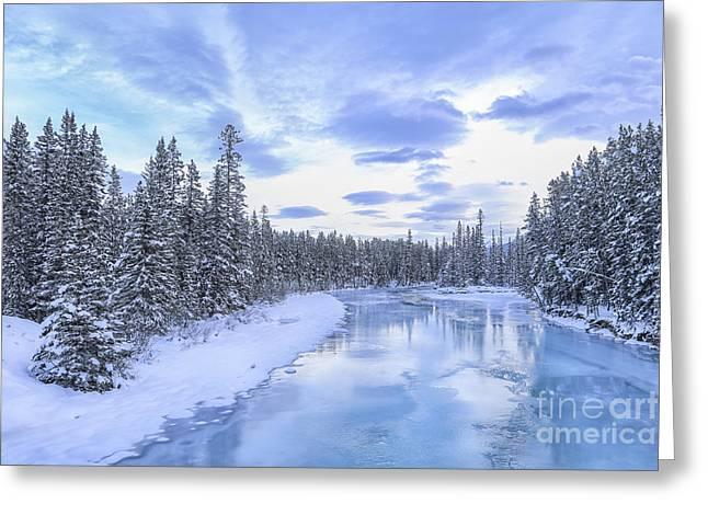 Banff Greeting Cards - Wintery Greeting Card by Evelina Kremsdorf