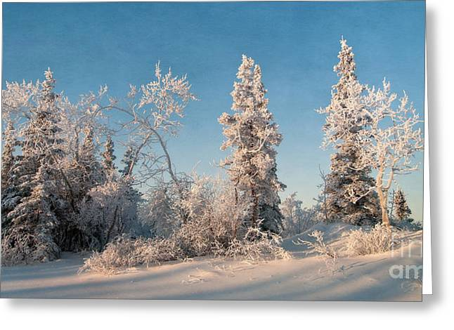 Winter Scenery Greeting Cards - Wintery Greeting Card by Priska Wettstein