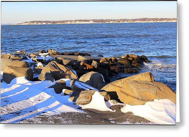 Wintry Day At The Bay Greeting Card by Dora Sofia Caputo Photographic Art and Design