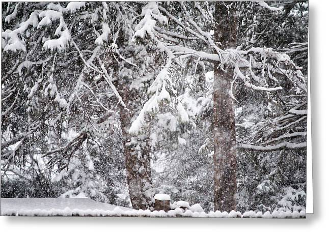 Wintry Greeting Cards - Wintry West Texas Greeting Card by Mickael Sherrill