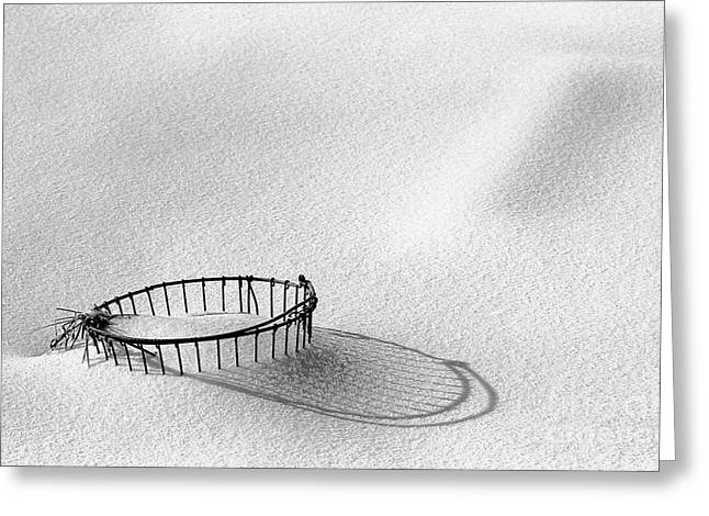 Cindi Ressler Greeting Cards - Wire Basket in Snow Greeting Card by Cindi Ressler