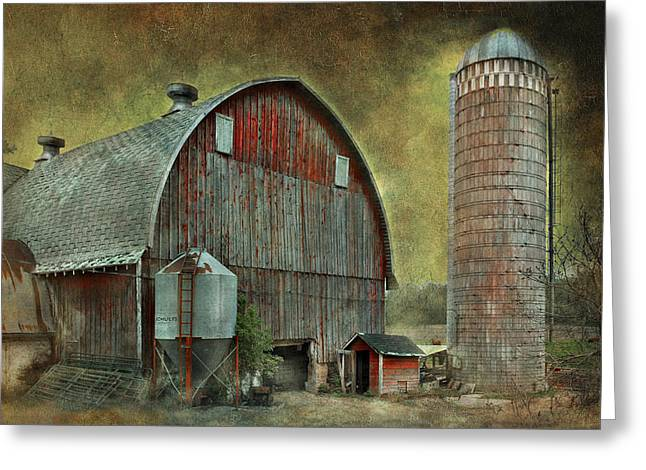 Metal Roof Greeting Cards - Wisconsin Barn - Series Greeting Card by Jeff Burgess