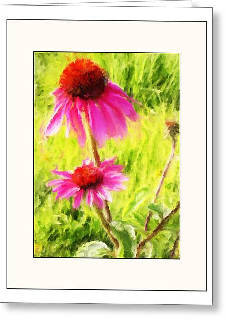 Big Blue Marble Greeting Cards - Wisconsin Cone Flowers Greeting Card by Kelly Gibson