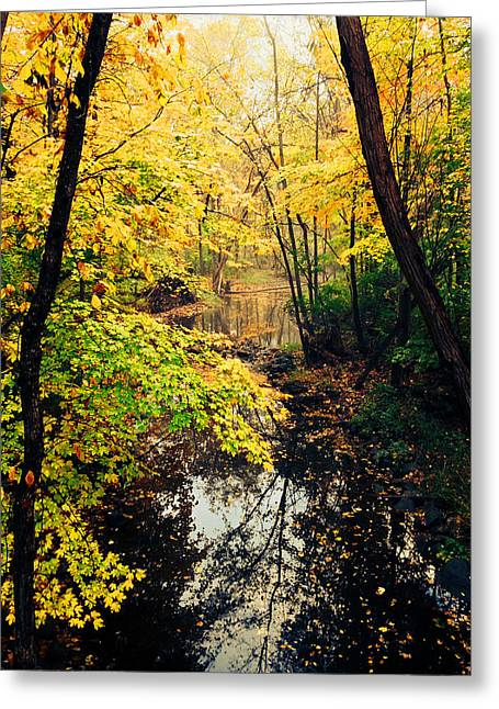 Wisconsin Greeting Cards - Wisconsin fall Greeting Card by Jeff Klingler