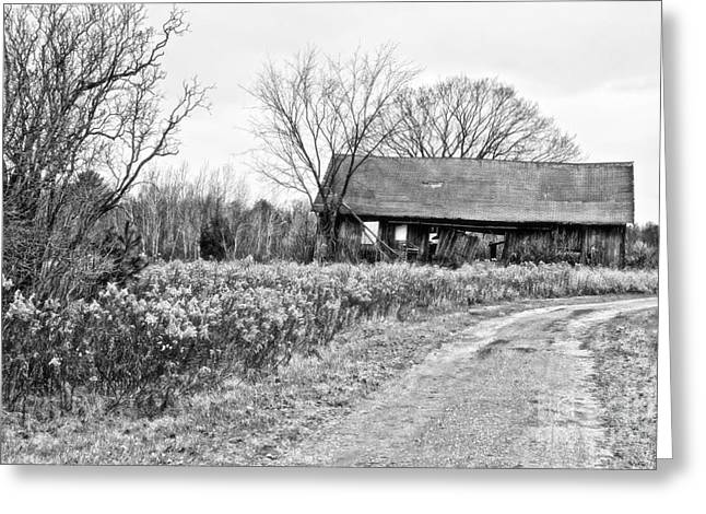 Field. Cloud Greeting Cards - Wisconsin Old Barn 2 Black and White Greeting Card by Ms Judi