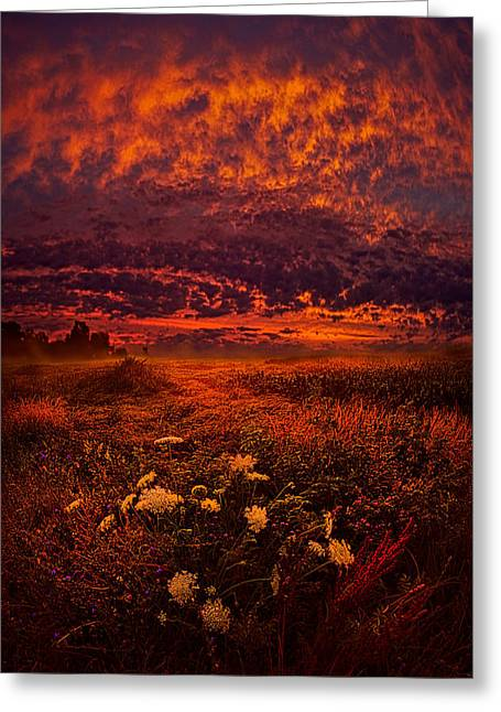 Instagood Greeting Cards - Wisconsin Twilight Greeting Card by Phil Koch