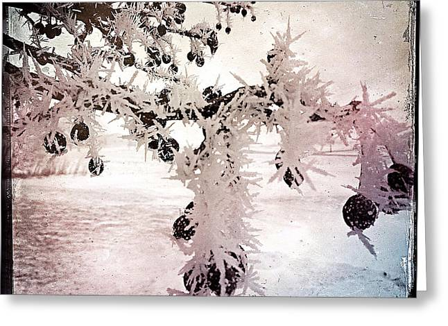 Repurposed Greeting Cards - Wisconsin Winter 2 Greeting Card by Gregg Jabs