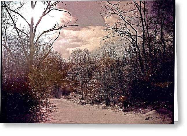 Repurposed Greeting Cards - Wisconsin Winter Greeting Card by Gregg Jabs