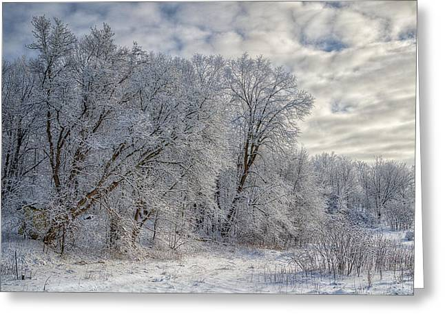 Wintry Greeting Cards - Wisconsin Winter Greeting Card by Joan Carroll