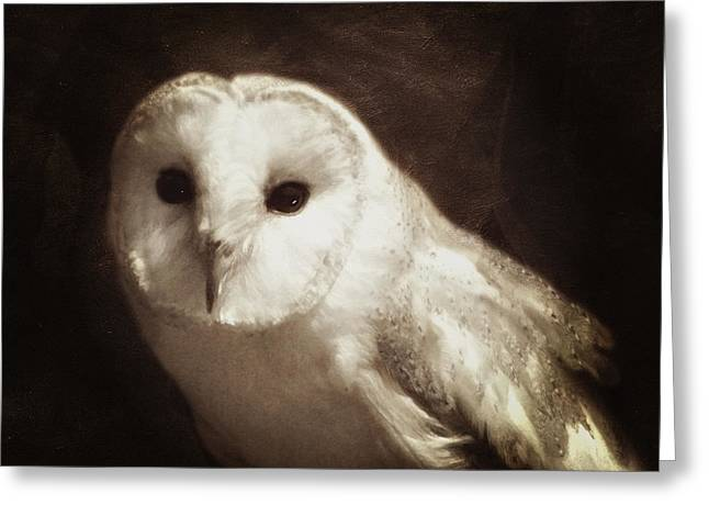 Snowy White Owl Greeting Cards - Wisdom Of An Owl Greeting Card by Georgiana Romanovna