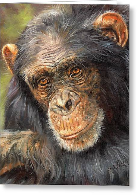 Ape. Great Ape Greeting Cards - Wise Eyes Greeting Card by David Stribbling