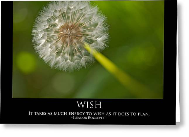 Wishes Greeting Cards - Wish Greeting Card by Bonnie Bruno