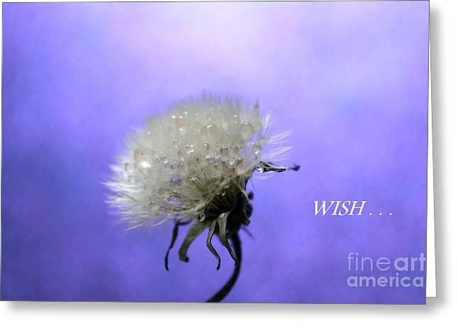 Wish  Greeting Card by Krissy Katsimbras