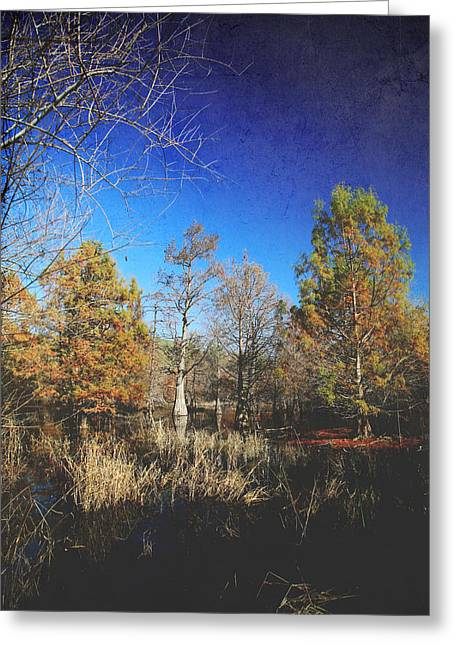 Winter Landscape Digital Greeting Cards - Wish You Would Greeting Card by Laurie Search