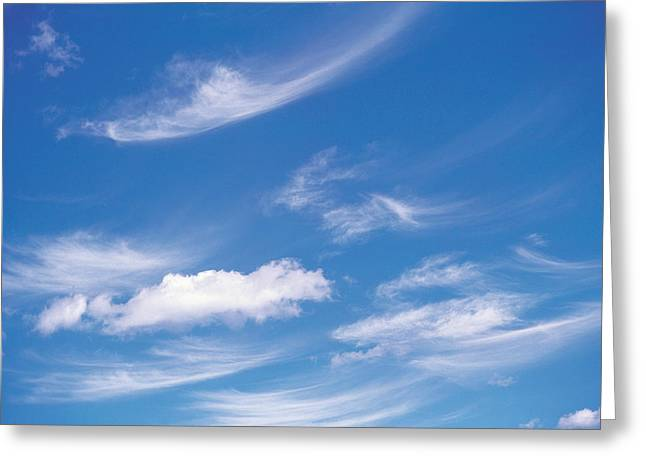 Wispy Greeting Cards - Wispy Clouds In Sky Greeting Card by Panoramic Images
