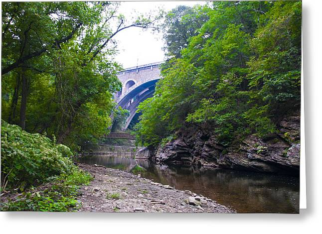 Wissahickon Creek Greeting Cards - Wissahickon Creek along Lincoln Drive Greeting Card by Bill Cannon