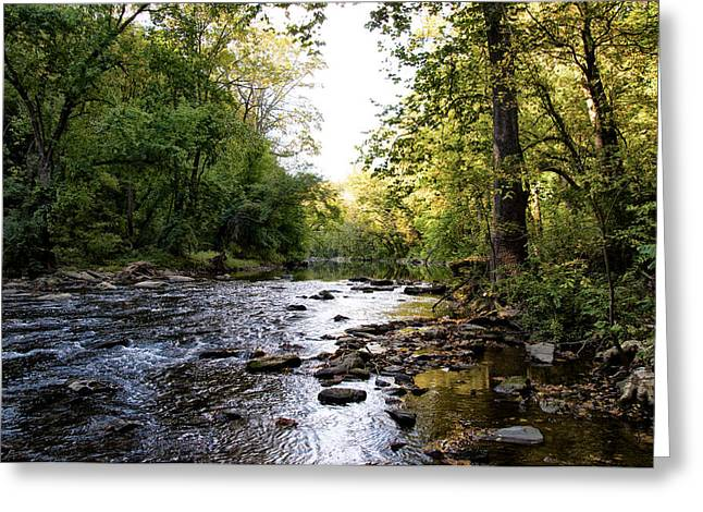 Wissahickon Greeting Cards - Wissahickon Creek near Bells Mill Greeting Card by Bill Cannon