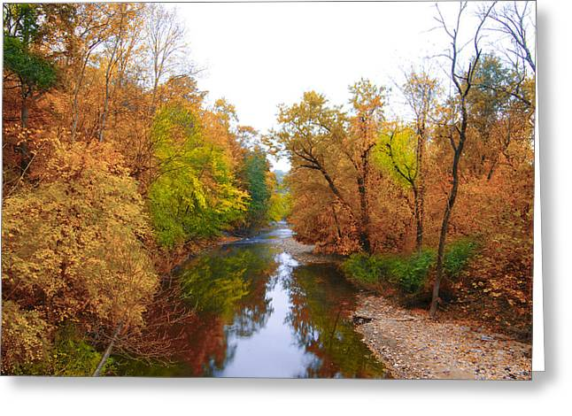 Wissahickon Creek Greeting Cards - Wissahickon Creek near Chestnut Hill College in Autumn Greeting Card by Bill Cannon