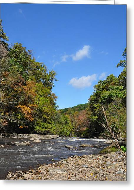 Wissahickon Creek Greeting Cards - Wissahickon Creek near Mt Airy Philadelphia Greeting Card by Bill Cannon